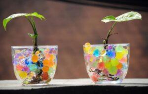 Гидрогель для растений как применять